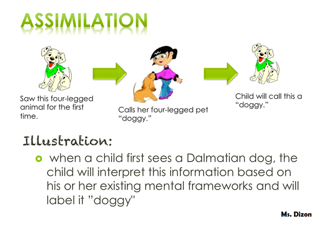 Examples of assimilation in infants.